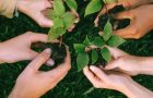 Ensuring that a Company's CSR Efforts are Meaningful and Impactful